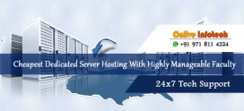 Cheapest Dedicated Server Right Choice to Enhance Business Capacity